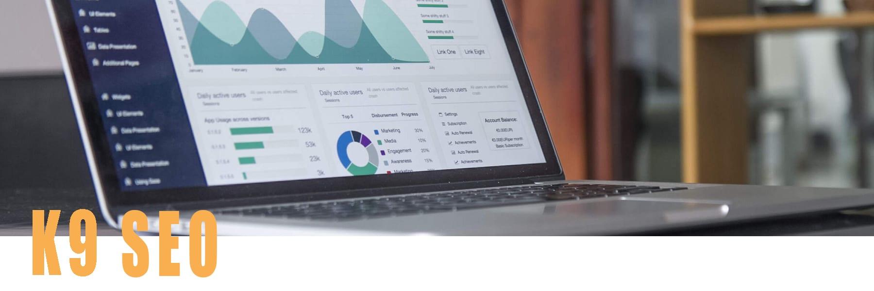 Team member computer showing SEO analytics data